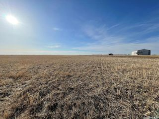 Photo 46: Phillips Acreage in Francis: Residential for sale (Francis Rm No. 127)  : MLS®# SK846217