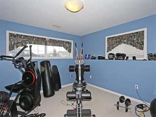 Photo 26: 191 STRATHAVEN Crescent: Strathmore House for sale : MLS®# C4088087