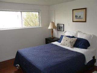 Photo 10: 12484 96A AVENUE in Surrey: Home for sale
