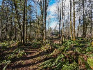 Photo 55: 3699 Burns Rd in COURTENAY: CV Courtenay West House for sale (Comox Valley)  : MLS®# 834832