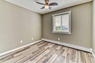 Photo 13: 337 1717 60 Street SE in Calgary: Red Carpet Apartment for sale : MLS®# A1067174