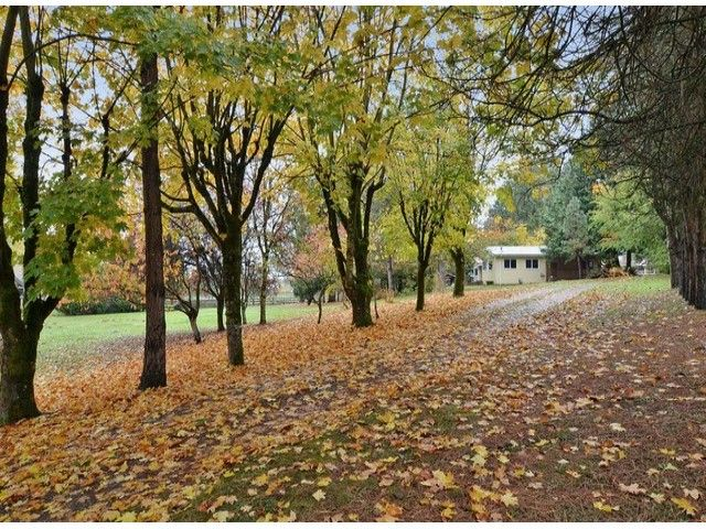 Photo 2: Photos: 21721 18 Avenue in Langley: Campbell Valley House for sale : MLS®# F1324842