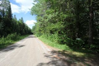 Photo 2: 300 Pinery Road in Kawartha Lakes: Rural Somerville Property for sale : MLS®# X4840235