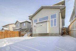 Photo 47: 150 Cranwell Green SE in Calgary: Cranston Detached for sale : MLS®# A1066623