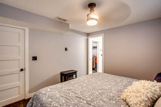 Photo 20: 216 Copperpond Road SE in Calgary: Copperfield Detached for sale : MLS®# A1034323
