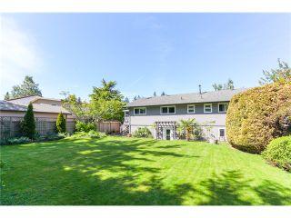 Photo 19: 5458 5B AV in Tsawwassen: Pebble Hill House for sale : MLS®# V1121880