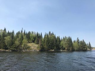 Photo 9: 5 Scott IS in Kenora: Vacant Land for sale : MLS®# TB191553