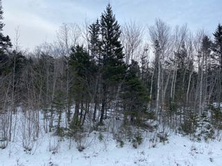 Photo 1: Shore Road West in Delaps Cove: 400-Annapolis County Vacant Land for sale (Annapolis Valley)  : MLS®# 202103088