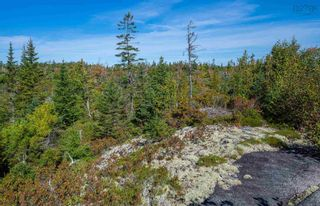 Photo 10: 2014 Myra Road in Porters Lake: 31-Lawrencetown, Lake Echo, Porters Lake Vacant Land for sale (Halifax-Dartmouth)  : MLS®# 202125407
