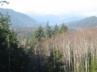 Photo 5: 1230 Cottonwood Rd in : NI Kelsey Bay/Sayward Land for sale (North Island)  : MLS®# 865463