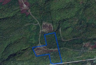 Photo 8: Woods Mountain Road in Parrsboro: 102S-South Of Hwy 104, Parrsboro and area Vacant Land for sale (Northern Region)  : MLS®# 202107896