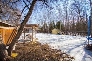 Photo 17: 715 Haney Street in Winnipeg: Charleswood House for sale (1G)  : MLS®# 1706771