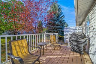 Photo 37: 3319 28 Street SE in Calgary: Dover Semi Detached for sale : MLS®# A1153645