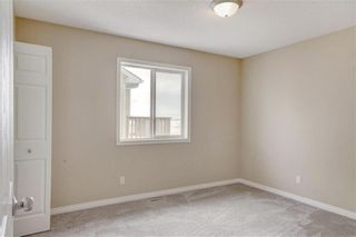 Photo 30: 268 Springmere Way: Chestermere Detached for sale : MLS®# C4287499