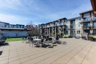 """Photo 19: 222 6688 120 Street in Surrey: West Newton Condo for sale in """"ZEN SALUS"""" : MLS®# R2355066"""