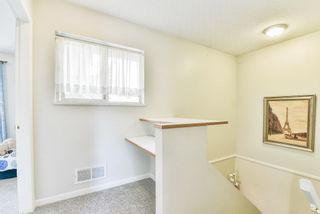 """Photo 16: 31 8675 209 Street in Langley: Walnut Grove House for sale in """"SYCAMORES"""" : MLS®# R2286923"""