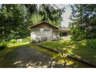 Photo 25: 26027 112 Avenue in Maple Ridge: Thornhill MR House for sale : MLS®# R2476121
