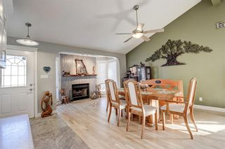 Photo 7: 3203 12 Avenue SE in Calgary: Albert Park/Radisson Heights Detached for sale : MLS®# A1139015