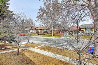 Photo 13: 1137 Berkley Drive NW in Calgary: Beddington Heights Semi Detached for sale : MLS®# A1136717