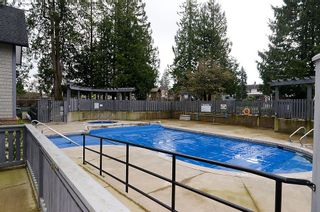 """Photo 27: 84 20875 80TH Avenue in Langley: Willoughby Heights Townhouse for sale in """"PEPPERWOOD"""" : MLS®# F1203721"""
