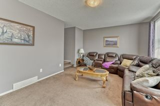 Photo 22: 7 SKYVIEW RANCH Crescent NE in Calgary: Skyview Ranch Detached for sale : MLS®# A1109473
