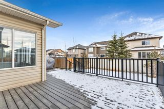Photo 42: 11 Baywater Court SW: Airdrie Detached for sale : MLS®# A1055709