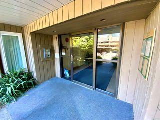 Photo 18: 103 3225 Alder St in : SE Quadra Condo for sale (Saanich East)  : MLS®# 877393