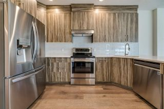 Photo 6: 11429 80 Avenue in Edmonton: Zone 15 House Half Duplex for sale : MLS®# E4202010
