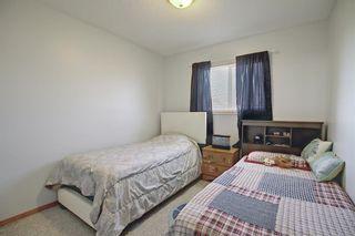 Photo 24: 145 Taravista Crescent NE in Calgary: Taradale Detached for sale : MLS®# A1125771