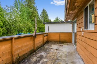 Photo 20: 22953 GILLEY Avenue in Maple Ridge: East Central House for sale : MLS®# R2456718