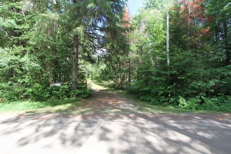 Main Photo: 300 Pinery Road in Kawartha Lakes: Rural Somerville Property for sale : MLS®# X4840235