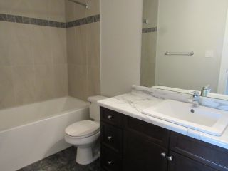 Photo 15: 311, 20 Alpine Place in St. Albert: Condo for rent