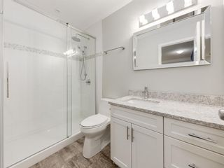 Photo 33: 183 ELGIN Way SE in Calgary: McKenzie Towne Detached for sale : MLS®# A1046358