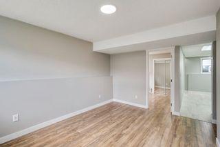 Photo 21: 3918 25 Avenue in Edmonton: Zone 29 House for sale : MLS®# E4250805