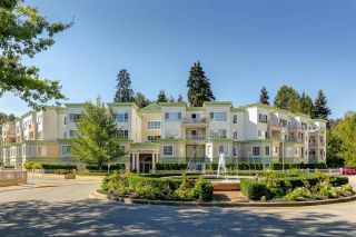 Photo 1: 201 2960 PRINCESS Crescent in Coquitlam: Canyon Springs Condo for sale : MLS®# R2111047