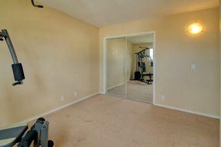 Photo 17: 244 BEDDINGTON Drive NE in Calgary: Beddington Heights House for sale : MLS®# C4195161