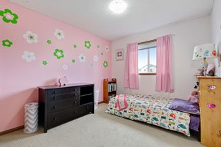 Photo 21: 267 Mt Apex Green SE in Calgary: McKenzie Lake Detached for sale : MLS®# A1121866
