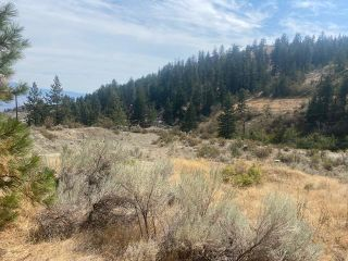 Photo 9: 15102 OLD RICHTER PASS Road, in Osoyoos: Vacant Land for sale : MLS®# 191208