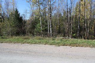 Photo 1: Lt 48 Centennial Park Road in Kawartha Lakes: Rural Eldon Property for sale : MLS®# X5380435