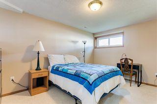 Photo 26: 103 WHITERAM Close NE in Calgary: Whitehorn Detached for sale : MLS®# C4268249