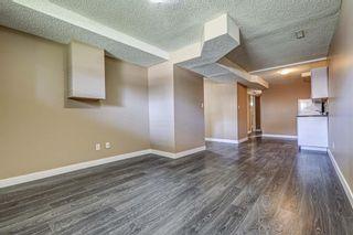 Photo 32: 165 Castlebrook Way NE in Calgary: Castleridge Semi Detached for sale : MLS®# A1107491