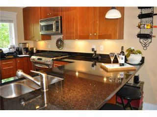 Photo 25: 223 E 17TH Street in North Vancouver: Central Lonsdale 1/2 Duplex for sale : MLS®# V891734