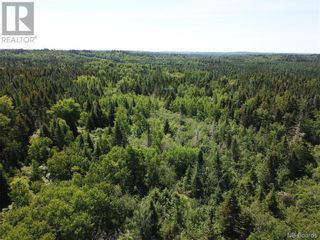 Photo 14: 100 Mount Pleasant Road in St. George: Vacant Land for sale : MLS®# NB059440