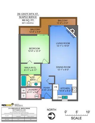 """Photo 4: 211 12025 207A Street in Maple Ridge: Northwest Maple Ridge Condo for sale in """"THE ATRIUM"""" : MLS®# R2619915"""