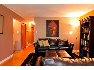 Photo 35: 2007 50 Avenue SW in Calgary: North Glenmore House for sale : MLS®# C4022807