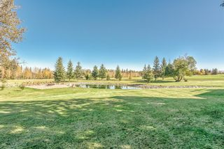 Photo 22: 32571 Rge Rd 52: Rural Mountain View County Detached for sale : MLS®# A1152209