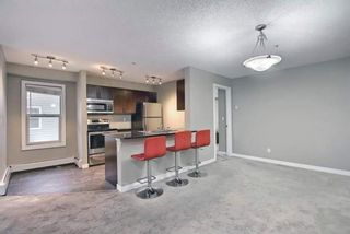 Photo 12: 1214 1317 27 Street SE in Calgary: Albert Park/Radisson Heights Apartment for sale : MLS®# A1142395