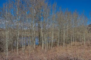 Photo 37: 9 ROCK LAKE Heights NW in Calgary: Rocky Ridge Detached for sale : MLS®# A1062307
