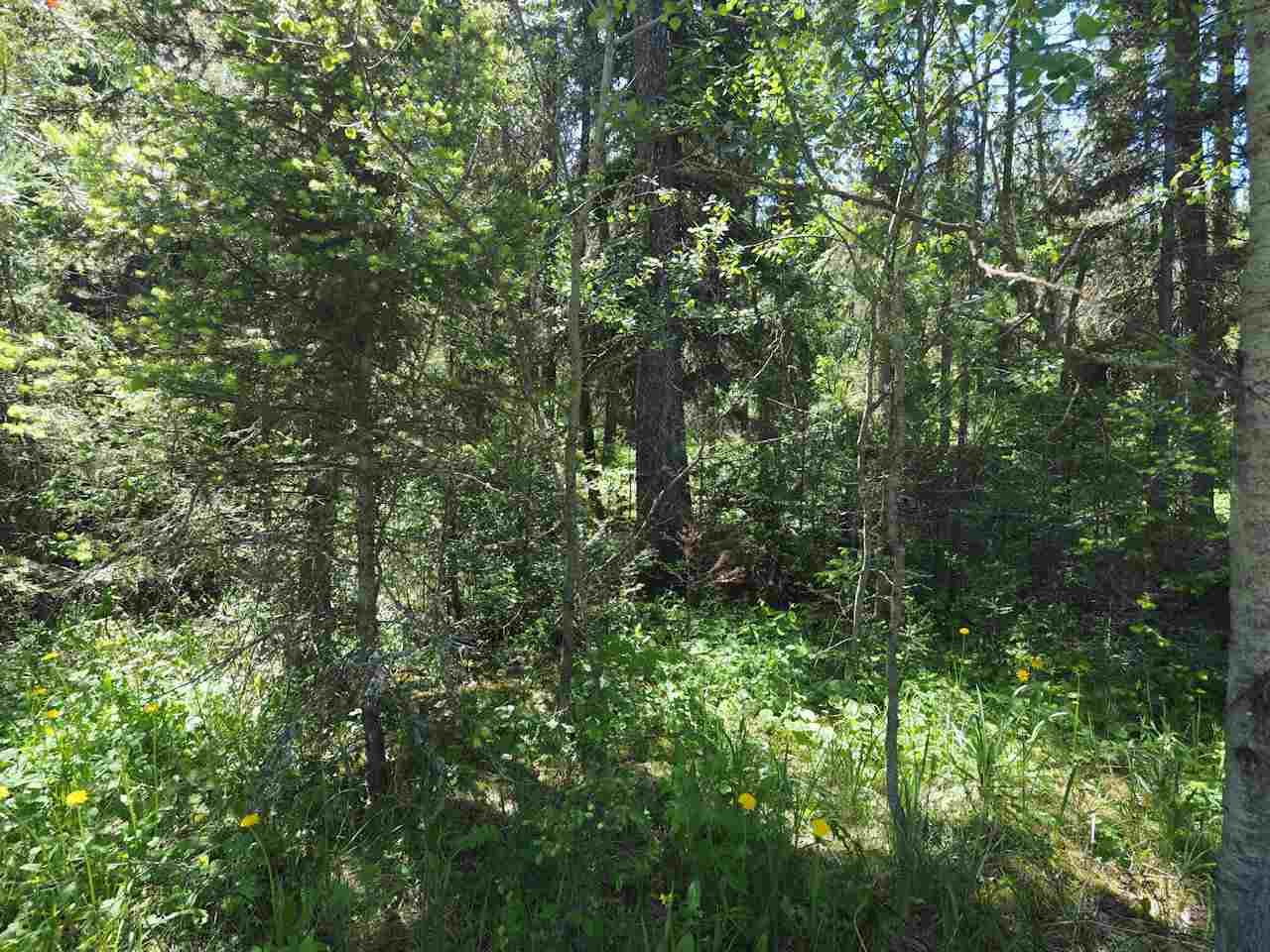 Photo 4: Photos: LOT 9 EASZEE Drive in 108 Mile Ranch: 108 Ranch Land for sale (100 Mile House (Zone 10))  : MLS®# R2467252