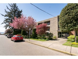 """Photo 19: 301 1355 FIR Street: White Rock Condo for sale in """"The Pauline"""" (South Surrey White Rock)  : MLS®# R2262403"""